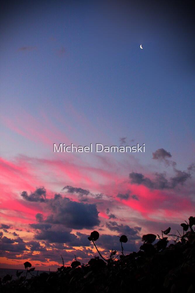 Moon at Sunrise by Michael Damanski