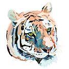 Tiger No.2 Head by christinahewson