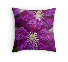 Dreaming of Clematis In The Rain Throw Pillow