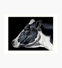 Holstein Friesian Dairy Cow Portrait Art Print