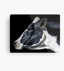 Holstein Friesian Dairy Cow Portrait Metal Print