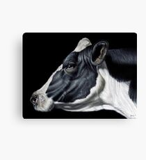 Holstein Friesian Dairy Cow Portrait Canvas Print