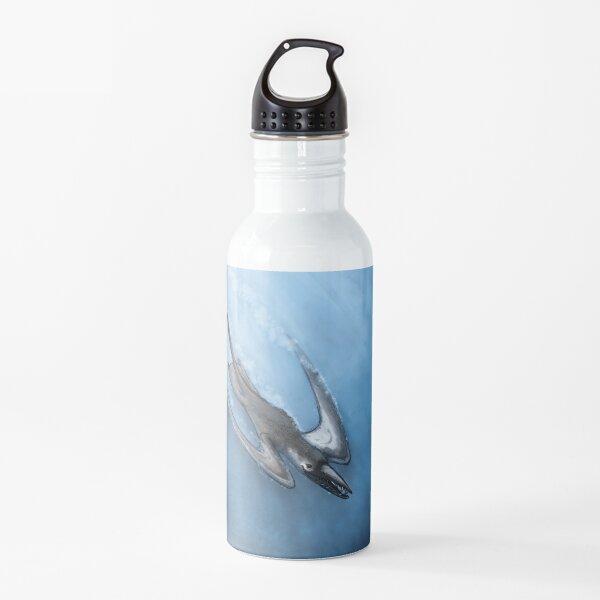 Rhamphorynchus Portrait Water Bottle