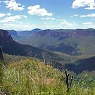 Blue Mountains View, from Govett's leap by Catherine Davis