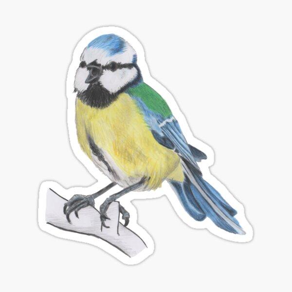 Bluetit 3/4 Sticker