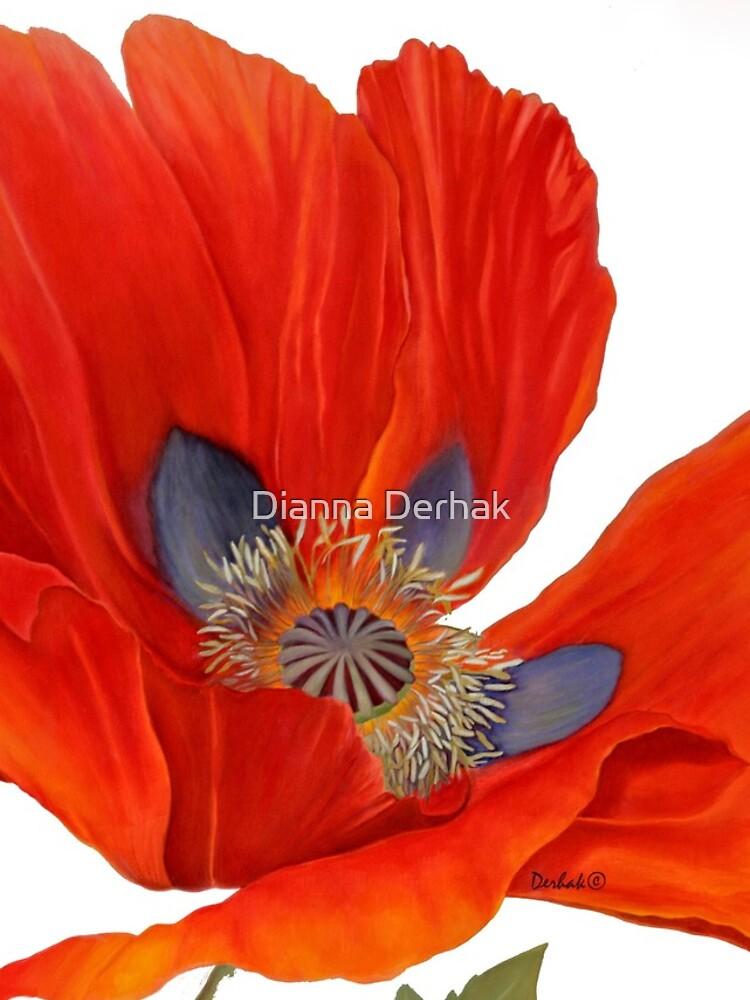 Orange Poppy By Dianna Derhak by DiannaDerhak