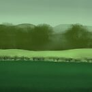 Field by Nigel Silcock