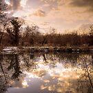 Lagan Meadows by Neil Carey