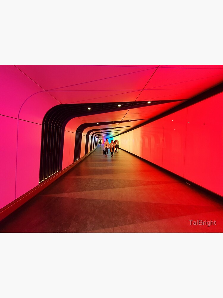 The Light Tunnel by TalBright