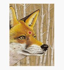Mr Fox Photographic Print