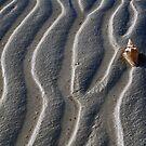 Low Tide by Leon Heyns