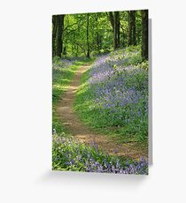 Bluebells in Coed Cefn Greeting Card