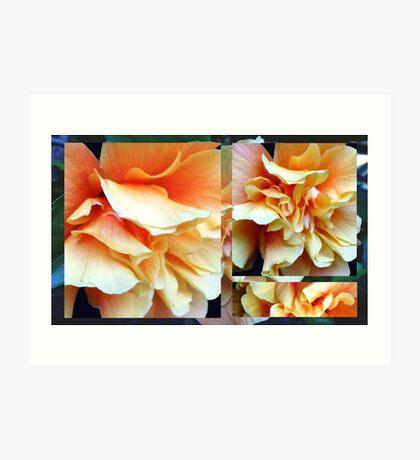 Collage with Double Orange Hibiscus Art Print