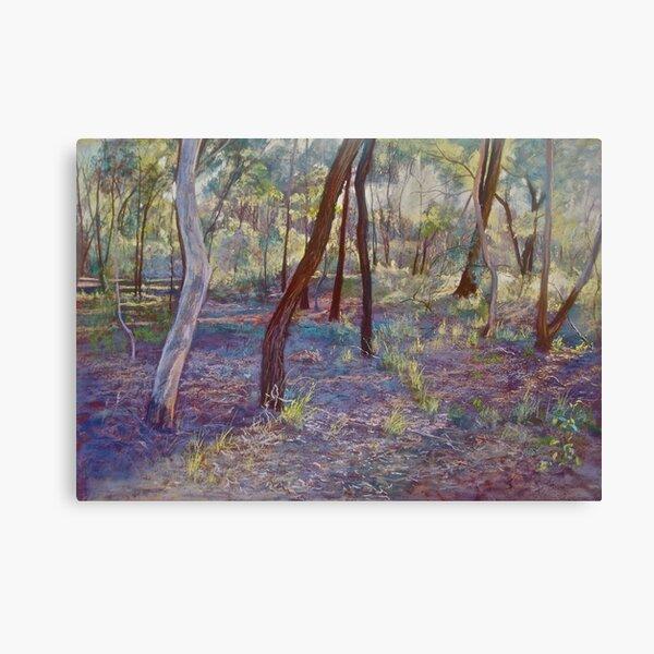 Ironbark Country (No. 3) Canvas Print