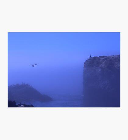 foggy ocean Photographic Print