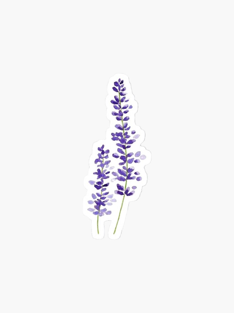 Lavender watercolor by josie2074