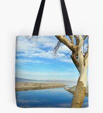 Salton Seascape Tote Bag