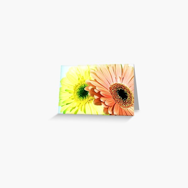 Gerbera Flowers - UK576/23 - www.lizgarnett.com Greeting Card