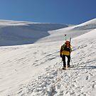 Climbing by neil harrison