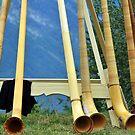 alpine horns by neil harrison