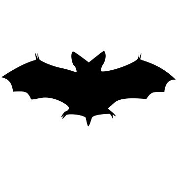 Bat by Irenuccia