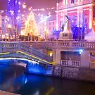 Christmas lights in Preseren Square in Ljubljana by Ian Middleton