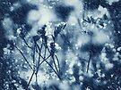 when it rains, it pours. by Angel Warda