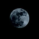 Almost Full Perigee Moon by tuffcookie