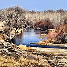 River of My Dreams by Barb Miller