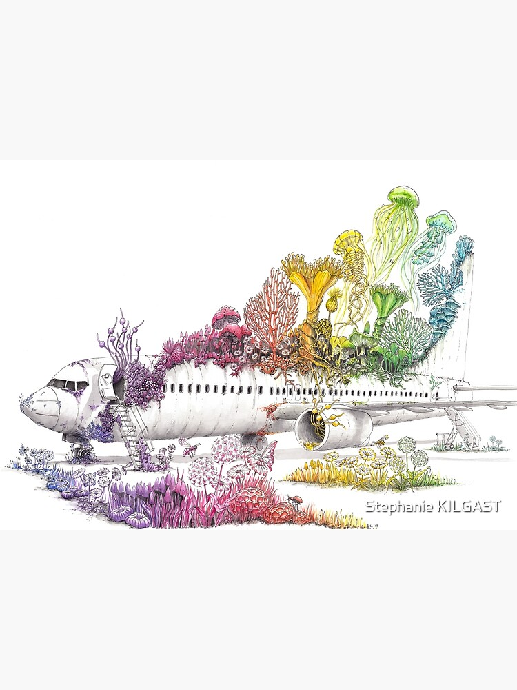 Long Landed - Plane Painting - Rainbow Nature by PetitPlat
