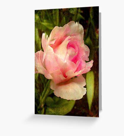 Soft as silk ©  Greeting Card