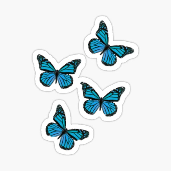 Aesthetic Butterfly Gifts Merchandise Redbubble