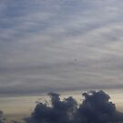 Open skies by Abhijeet Basu