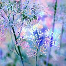 Beautiful grasses - purple and blue by Tummy Rubb Studio