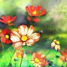 Wild flowers -  bright orange by Tummy Rubb Studio