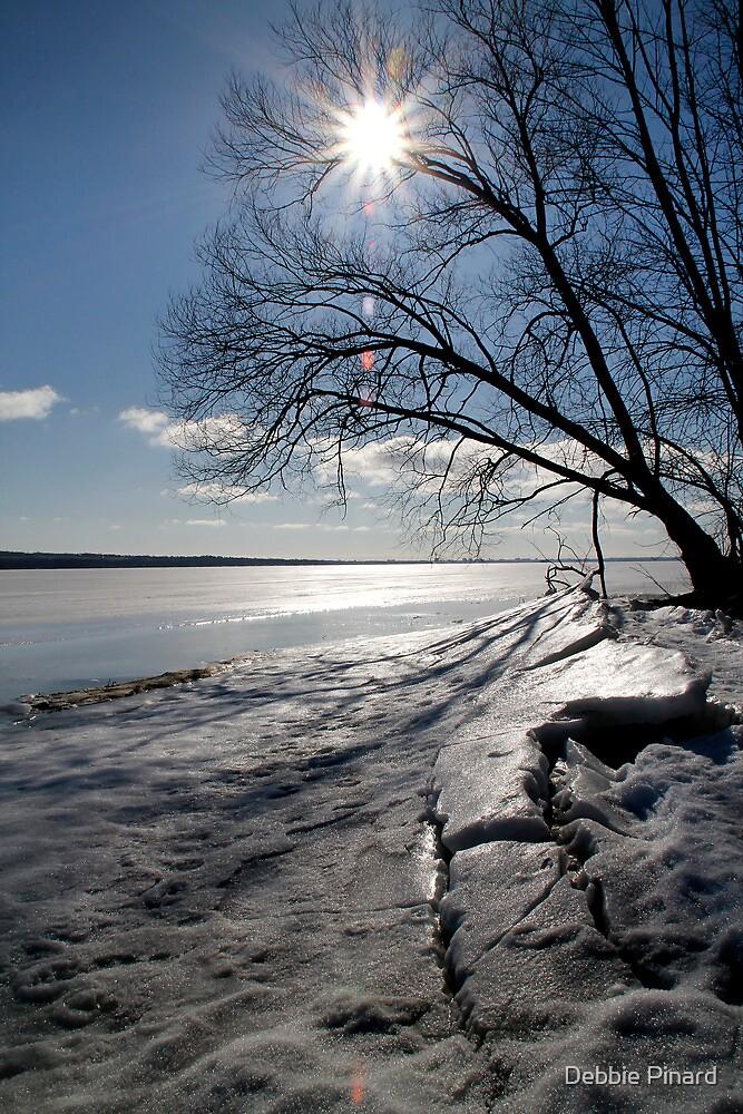 Spring Ice - Ottawa River by Debbie Pinard
