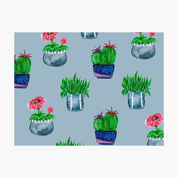 Cacti pattern Photographic Print