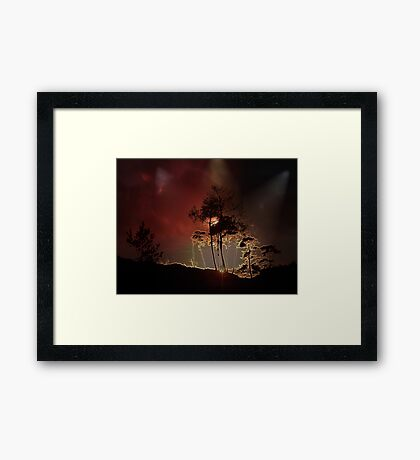 Almost Night Trees Framed Print