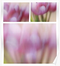 Impression ~ Tulips Poster