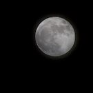 Super Moon by Barb White