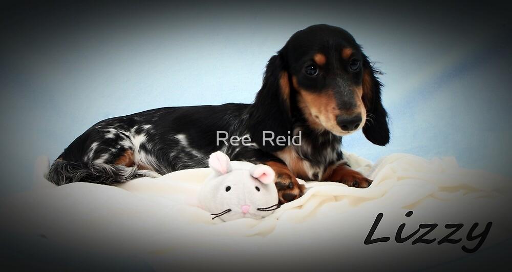 Pretty Lizzy by Ree  Reid