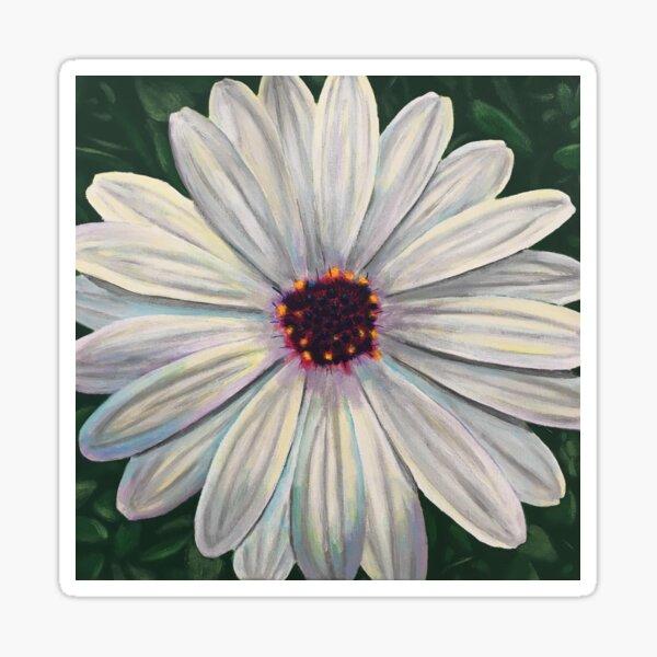 White African Daisy Sticker