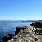 Lover's Point Seawall by Sandra Gray