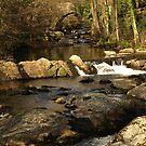 River Erme by moor2sea
