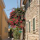 The streets of Herceg Novi by Elena Skvortsova