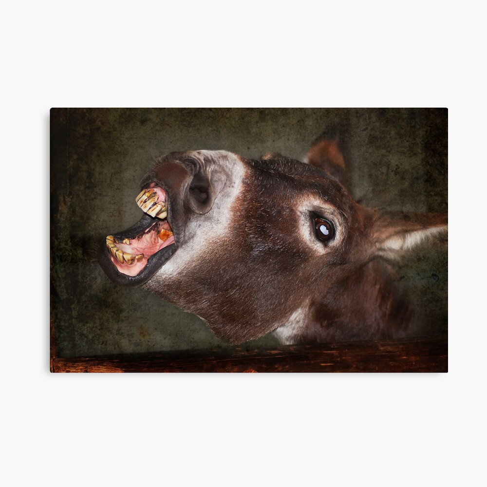 Quit Smoking! or have teeth like mine Canvas Print