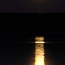 SuperMoon III by mojo1160