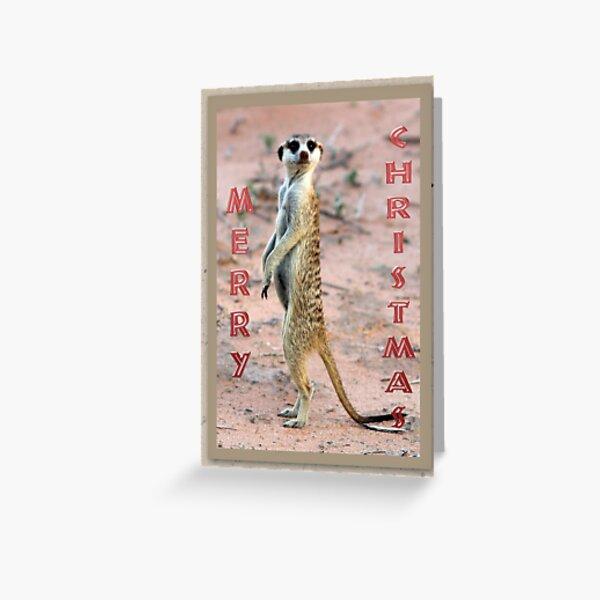 Meerkat Sentinel - Christmas Card Greeting Card