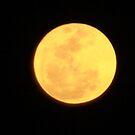 Super Moon by MommyJen