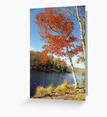 Autumn Foliage in Connecticut, New England Greeting Card
